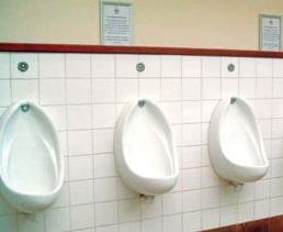 kirstenbosch urinals22
