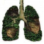 green-lungs-help-us-breathe-better