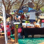 catch-the-hoedspruit-sustainable-living-fest