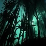 national-marine-week-highlights-our-oceans-plight