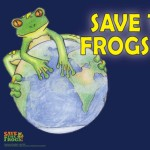 help-save-our-frogs-this-december