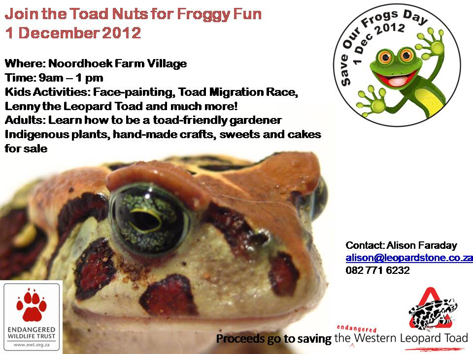 Cape Peninsula Frog Day