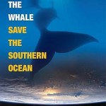 a-chance-to-save-the-southern-ocean