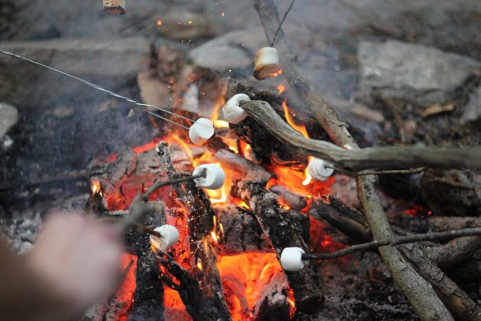 Camp Africa - roasting marshmellows