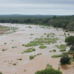 acid-mine-drainage-to-be-pumped-into-already-ailing-rivers
