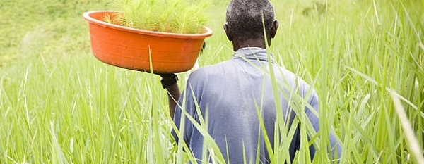 africa-can-choose-a-sustainable-future
