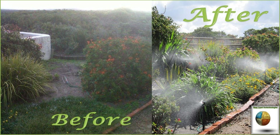 West Coast Ecotechnologies - garden before and after