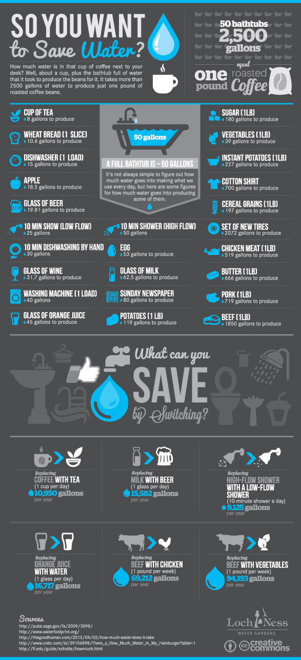 water saving infographic