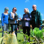 Sustainable Living and Indigenous Plant Fair (SLIP)