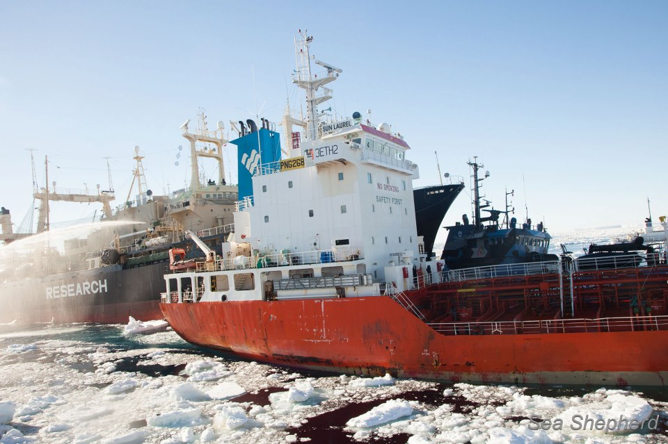 Sea Shepherd clashes with Japanese whaling ships3