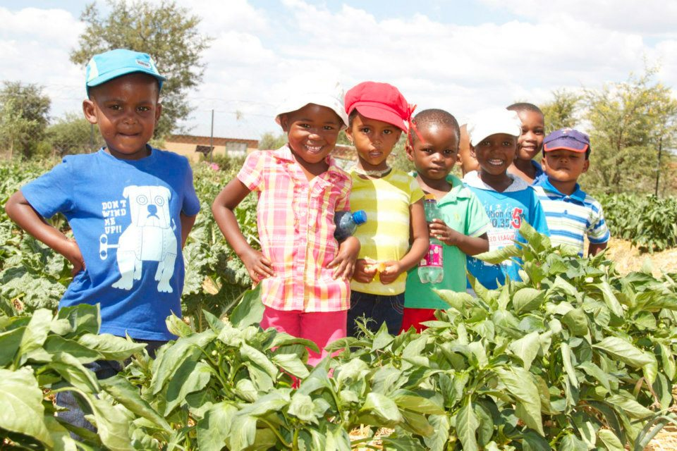launch of the Mangwana Day Care Centres permaculture food garden-4
