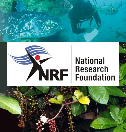 National Research Foundation1