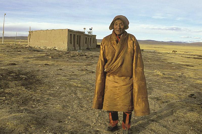 tibet 5 herder