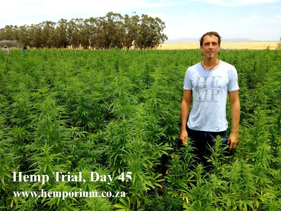 Day 45 Tony in Field
