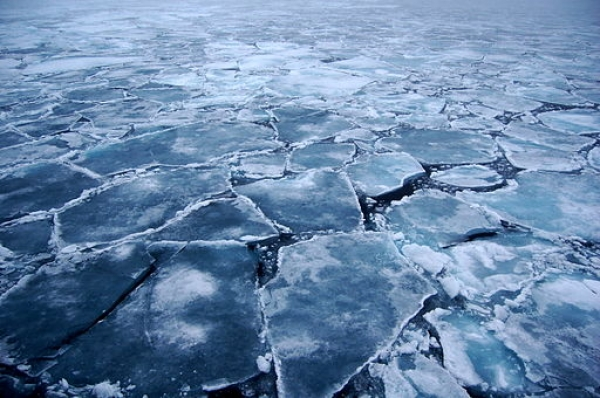 arctic-to-be-ice-free-in-40-years?