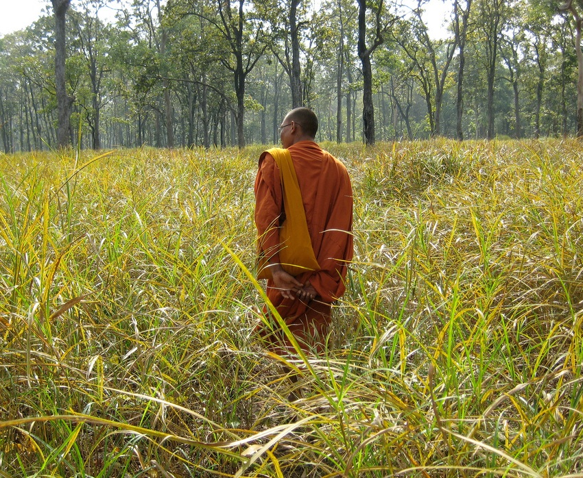 ARC - Monks Community Forest Cambodia
