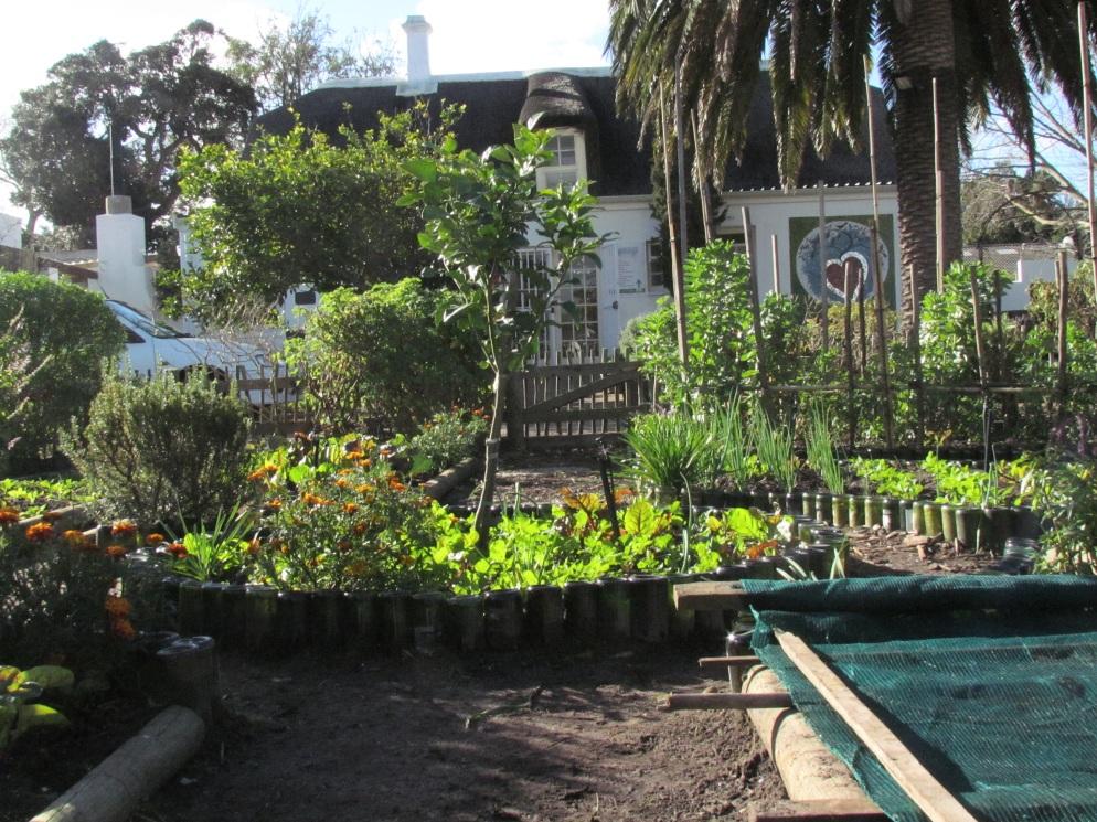 organic at heart