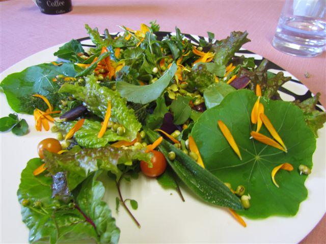 Wild lunch