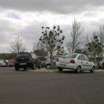 south-africas-first-carpool-week