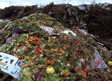 Food-Waste-in-Landfill1
