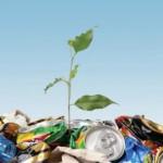 city-wins-recycling-municipality-of-the-year-award