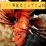 Aspiring nature photographers wanted