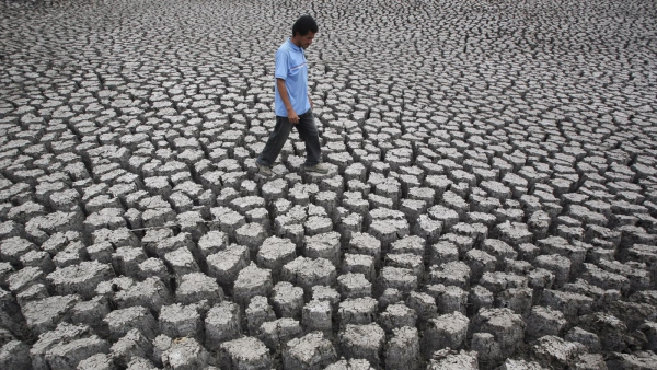 el-niño-may-make-2014-the-world's-hottest-year-yet