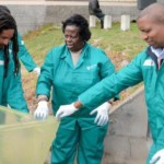 monthly-beach-cleanups-become-part-of-the-norm