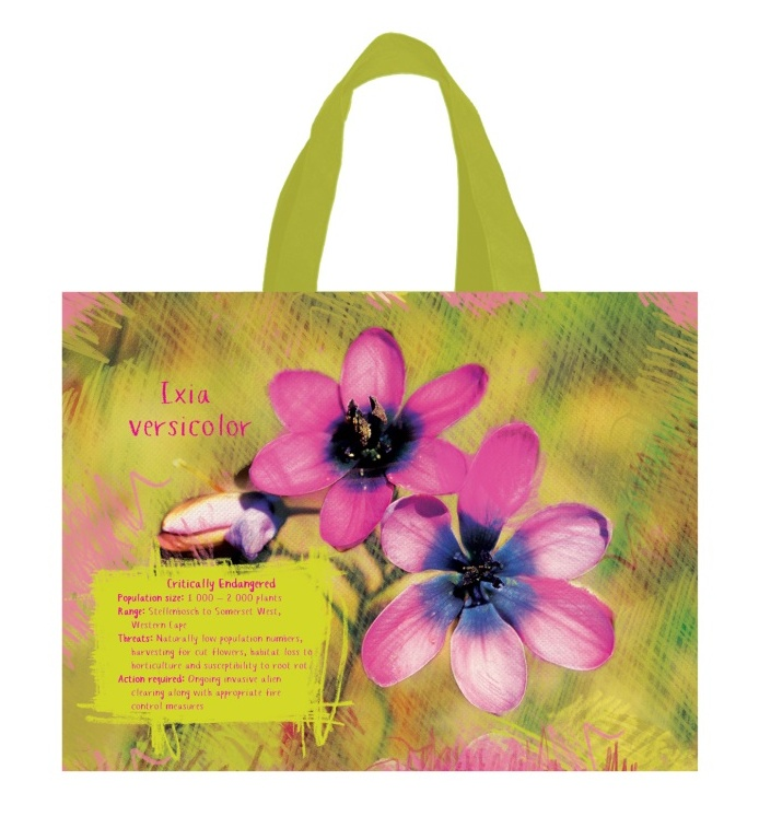 Woolworths botanical bag2