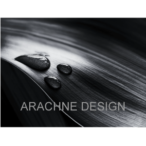 Arachne-Business-Card