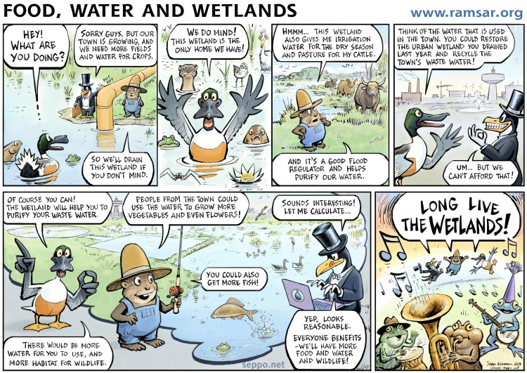 World Wetlands Day comic