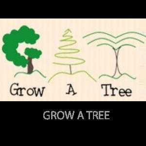 grow-a-tree