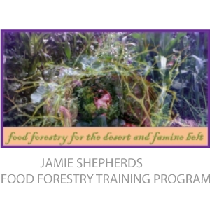 jamie-shepherds-food-forestry-training-program