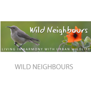 wild-neighbours