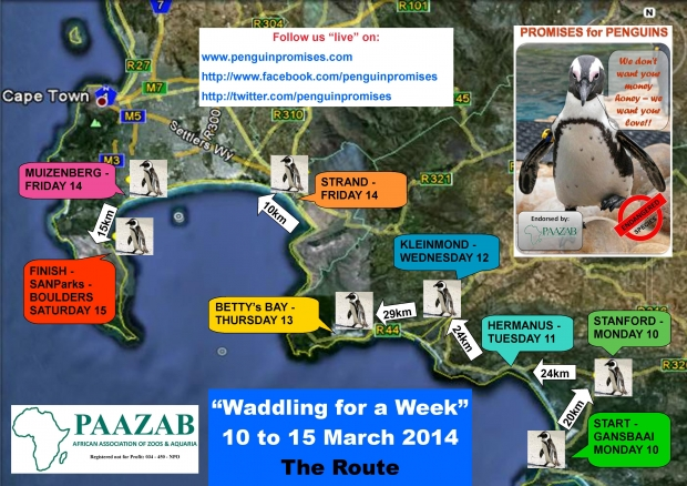 Waddle for a Week 2014 -b