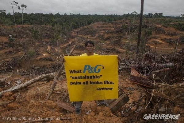 greenpeace palm oil deforestation -2