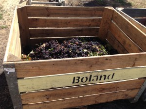 oh to live in the Boland