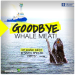 No whale meat shipment allowed in Durban port