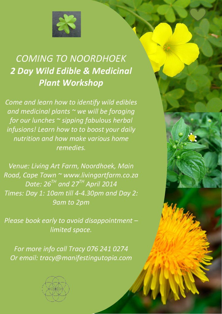 Medicinal and edible WS Noordhoek Apr