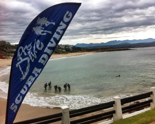 Plett Hope Spot World Oceans Day
