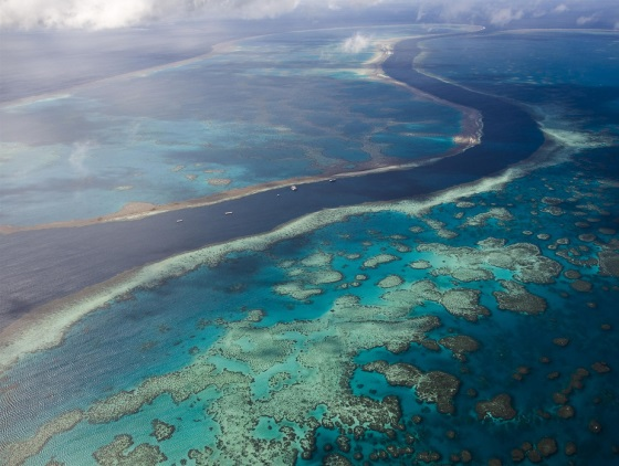 great barrier reef abbot point coal dredging2