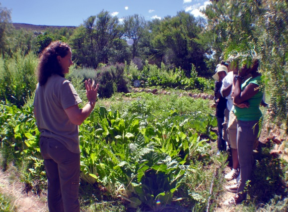 liz with emerging farmers in veg garden