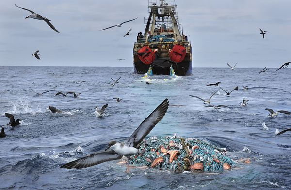 Global Ocean Commission report petition UN