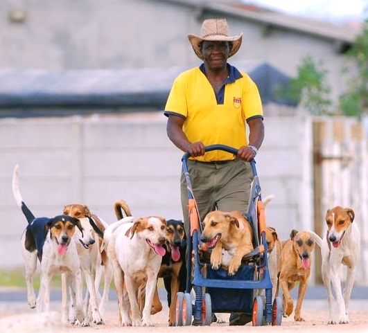 Khayelitsha dog kennels Madiba Day