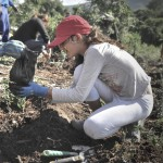 Go treeplanting in Hogsback this Arbor month