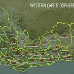 City requests declaration of the Cape Town Bioregion