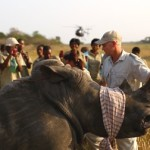 Peace Parks' Rhino Protection -4