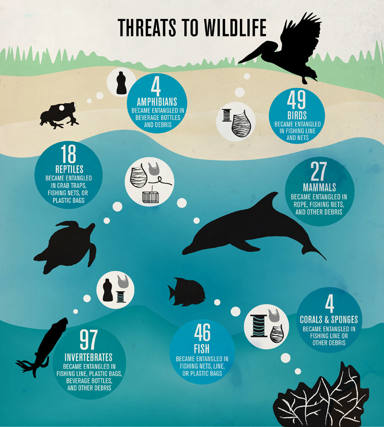 threats to wildlife coastal cleanup