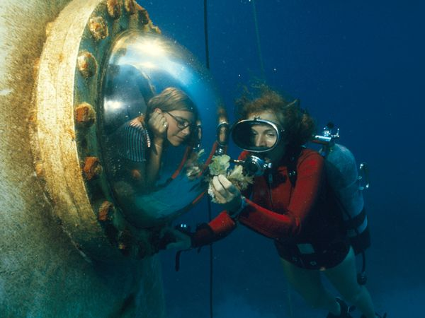 Dr. Earle shows algae to an engineer. Photo by  Bates Littlehales. Image: National Geographic.