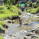 Poo issues in Sir Lowry's Pass Village